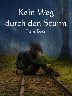 cover image of Kein Weg durch den Sturm