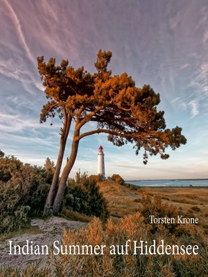 cover image of Indian Summer auf Hiddensee