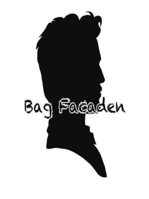 cover image of Bag facaden