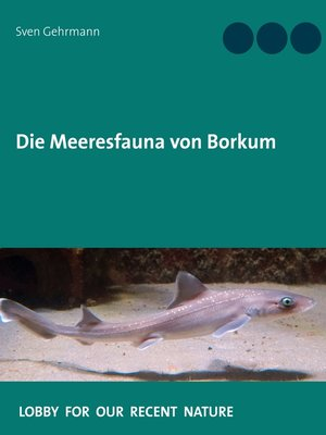 cover image of Die Meeresfauna von Borkum