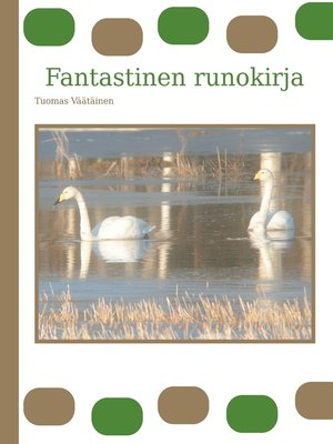 cover image of Fantastinen runokirja
