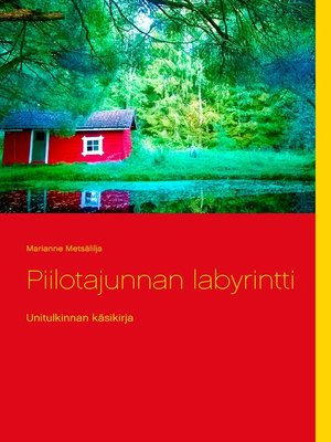 cover image of Piilotajunnan labyrintti