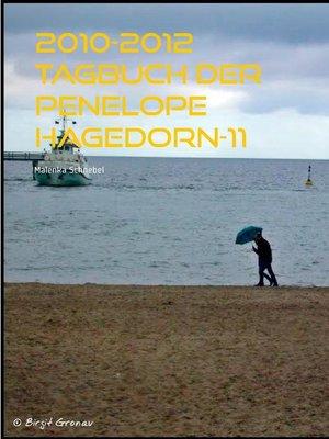 cover image of 2010-2012 Tagbuch der Penelope Hagedorn-11