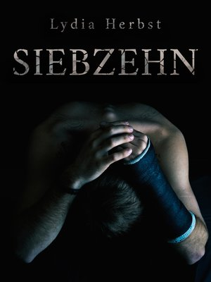 cover image of Siebzehn