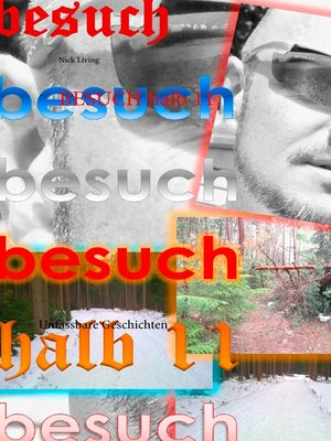 cover image of Besuch halb 11