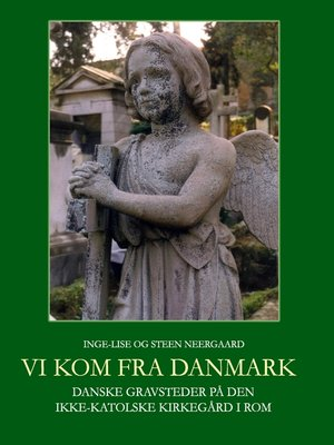 cover image of Vi kom fra Danmark
