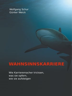 cover image of Wahnsinnskarriere