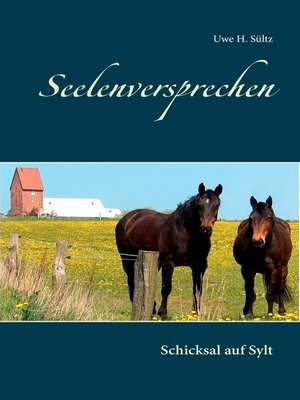 cover image of Seelenversprechen
