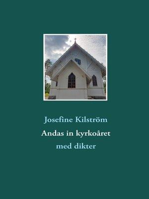 cover image of Andas in kyrkoåret