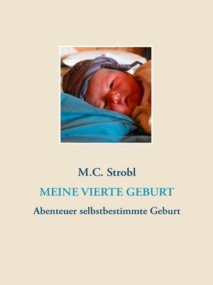 cover image of Meine vierte Geburt