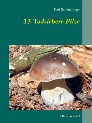 cover image of 13 Todsichere Pilze