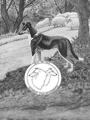 cover image of 70-vuotisjuhlajulkaisu