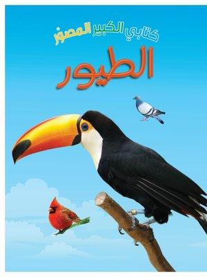 cover image of كتابي الكبير المصور : الطيور