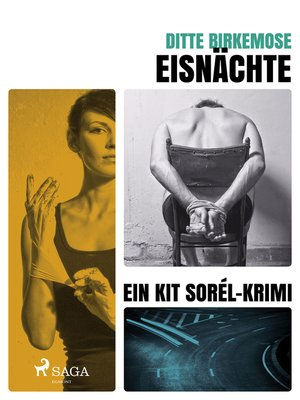 cover image of Eisnächte