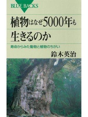 cover image of 植物はなぜ5000年も生きるのか 寿命からみた動物と植物のちがい