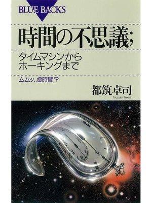 cover image of 時間の不思議;タイムマシンからホーキングまで ムムッ、虚時間?