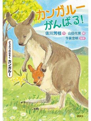 cover image of どうぶつのかぞく カンガルー カンガルーがんばる!: 本編