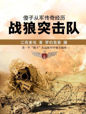 cover image of 傻子从军传奇经历