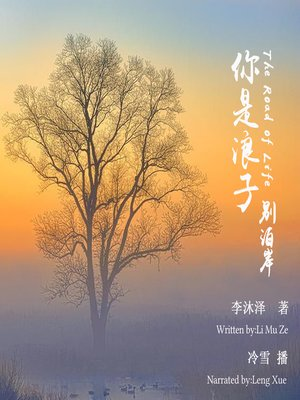 cover image of 你是浪子,别泊岸