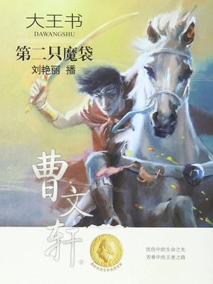 cover image of 第二只魔袋
