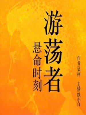cover image of 游荡者