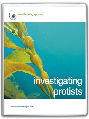 cover image of Investigating Protists