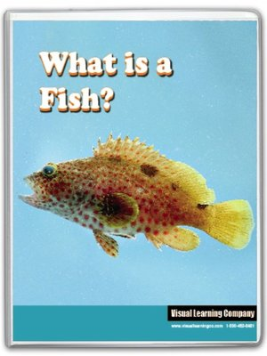 cover image of What is a Fish?