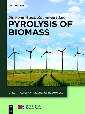 cover image of Pyrolysis of Biomass