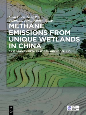 cover image of Methane Emissions from Unique Wetlands in China