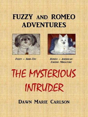 cover image of The Mysterious Intruder