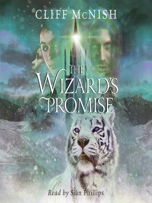 cover image of The Wizard's Promise