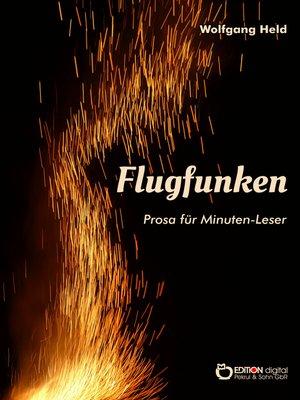 cover image of Flugfunken