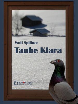 cover image of Taube Klara oder Zufälle gibt es nicht