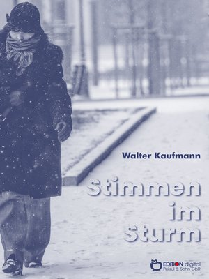 cover image of Stimmen im Sturm