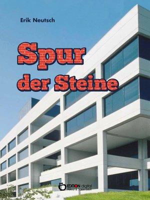 cover image of Spur der Steine