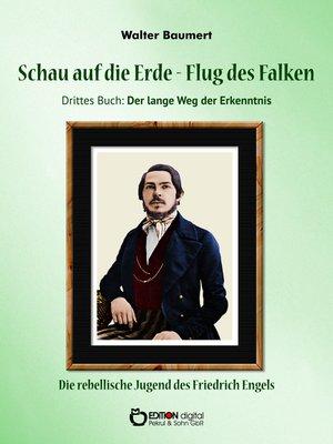 cover image of Schau auf die Erde – Der Flug des Falken. Drittes Buch