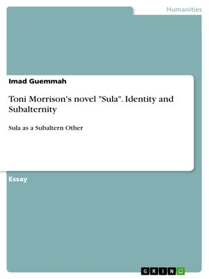 Social Identity Theory in Toni Morrison's Sula