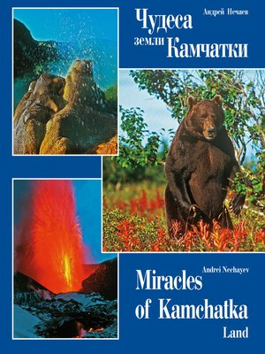 cover image of Чудеса земли Камчатки (Miracles of Kamchatka Land)