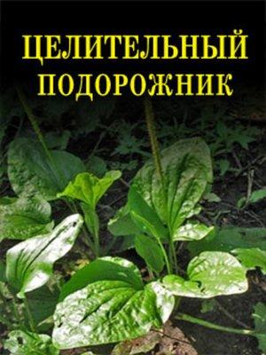 cover image of Целительный подорожник