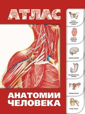 cover image of Атлас анатомии человека