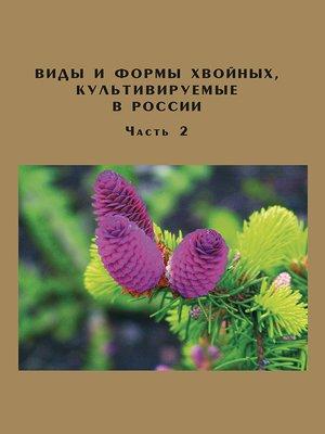 cover image of Виды и формы хвойных, культивируемые в России. Часть 2. Picea A. Dietr., Thuja L.