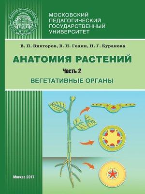 cover image of Анатомия растений. Часть 2. Вегетативные органы