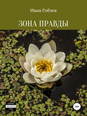 cover image of Зона Правды