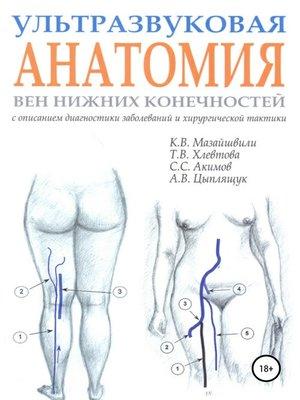 cover image of Ультразвуковая анатомия вен нижних конечностей