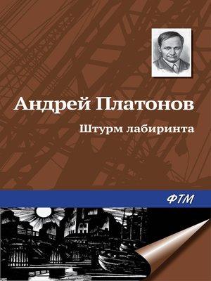 cover image of Штурм лабиринта