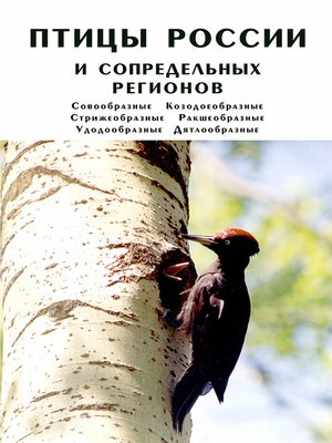 cover image of Птицы России и сопредельных регионов. Совообразные, Козодоеобразные, Стрижеобразные, Ракшеобразные, Удодообразные, Дятлообразные
