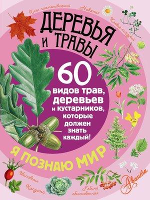 cover image of Деревья и травы. 60 видов трав, деревьев и кустарников, которые должен знать каждый