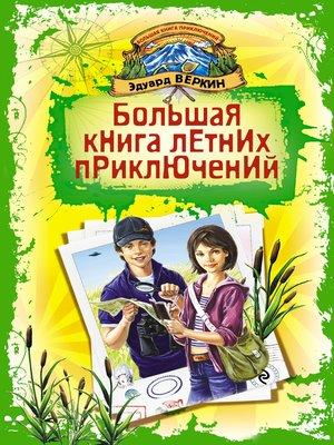 cover image of Большая книга летних приключений