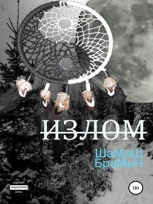 cover image of Излом