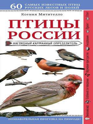 cover image of Птицы России. Наглядный карманный определитель
